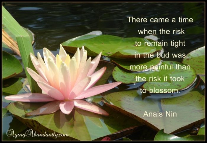 Anais Nin picture quote